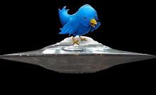 Síguenos en Twitter (clic)