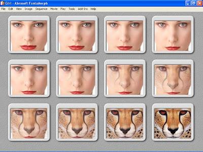 programa para modificar rostros