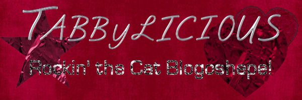 Tabbylicious: Tristan's Place on the Internet