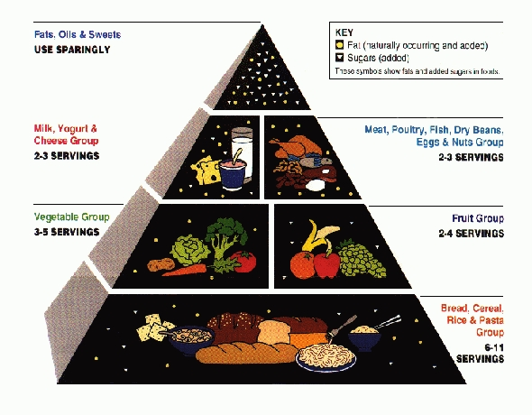 The first USDA Food Pyramid