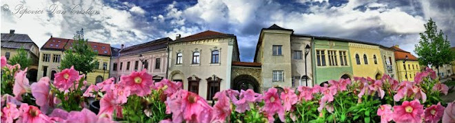 Panorama Of The Old Center Baia Mare 180°