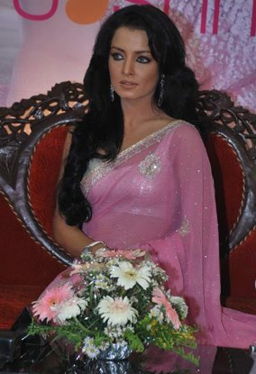 celina jaitley pink saree baby doll photo gallery