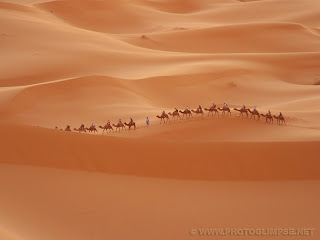 Free Desktop Wallpapers With Image Desert Landscape Wallpaper Picture 6