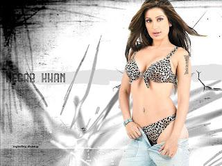 Bikini Wallpapers For Free Desktop Wallpaper With Image Celebrity Bikini Wallpaper Picture 7