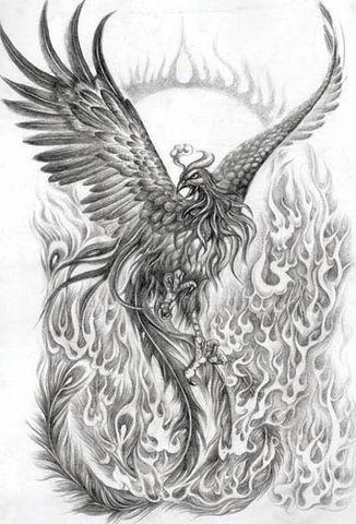 Phoenix Tattoo Designs Gallery