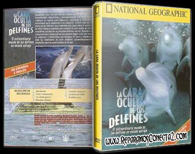 La cara oculta de los delfines (Nat.Geo, 1995) español de España megaupload 2 links