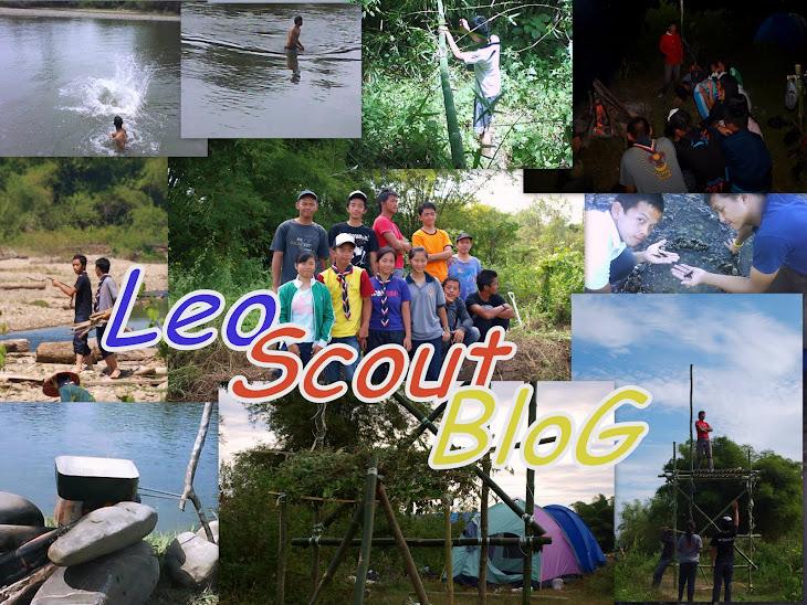 LeoScoutBlog