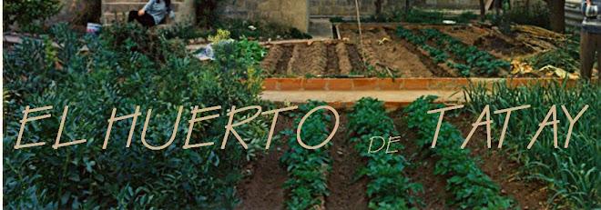 EL HUERTO DE TATAY