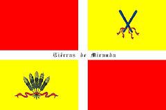 Bandeira no-oufecial