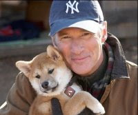 Richard Gere and Hachiko - A Do Story Movie