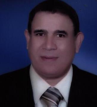 (مجلة صوت السرو ):رئيس تحرير مجلة صوت السرو المطبوعة والإلكترونية :ناجى السنباطى