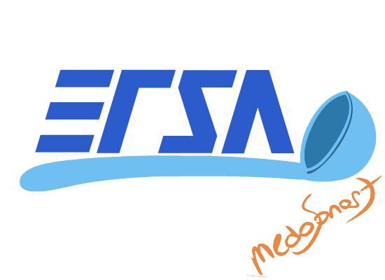 Ersa yemek sanayii logosu - medosanart
