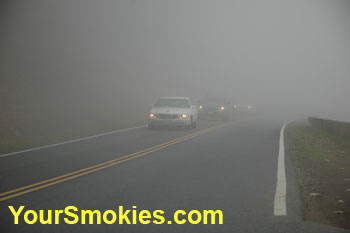 fog on newfound gap road 441