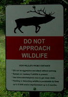 elk warning sign in the national park