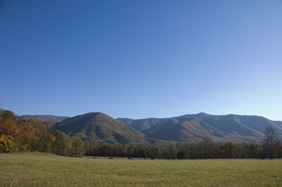 Join me for a guided hike in Cades Cove