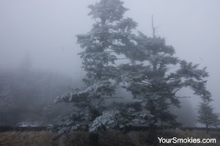 winter storm at Clingmans Dome in the Great Smoky Mountains national park