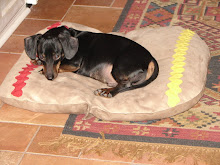 My Hot Dog DEUCE!