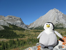 In the Canadian Rockies - Aug09