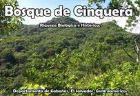 BOSQUE DE CINQUERA