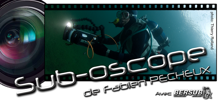 SUB-OSCOPE de Fabien PECHEUX