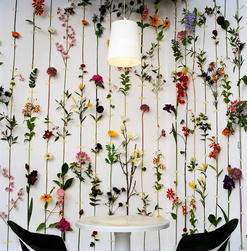 Tensta flower wallpaperviayouareloved