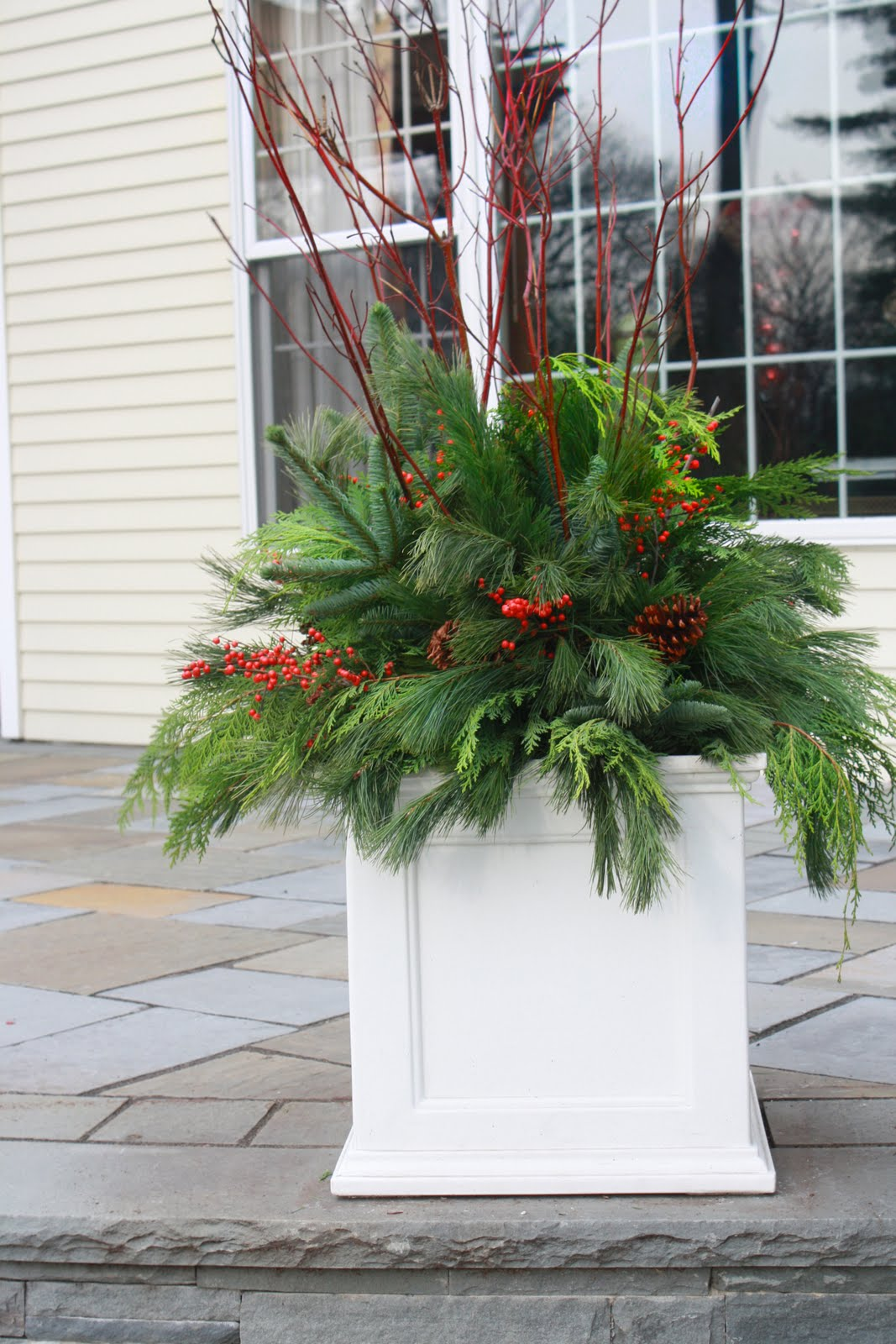 Flores del sol christmas container plantings for Xmas garden decorations