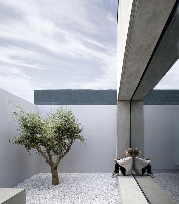 Interior Courtyard Garden Home: Una Casa, Un Patio, Un Olivo... Por ODOS Architects