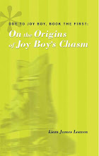 On the Origins of Joy Boy&#39;s Chasm
