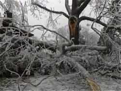 Louisville Ice Storm