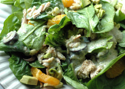 Spinach Salad with Pork, Avocado and Oranges