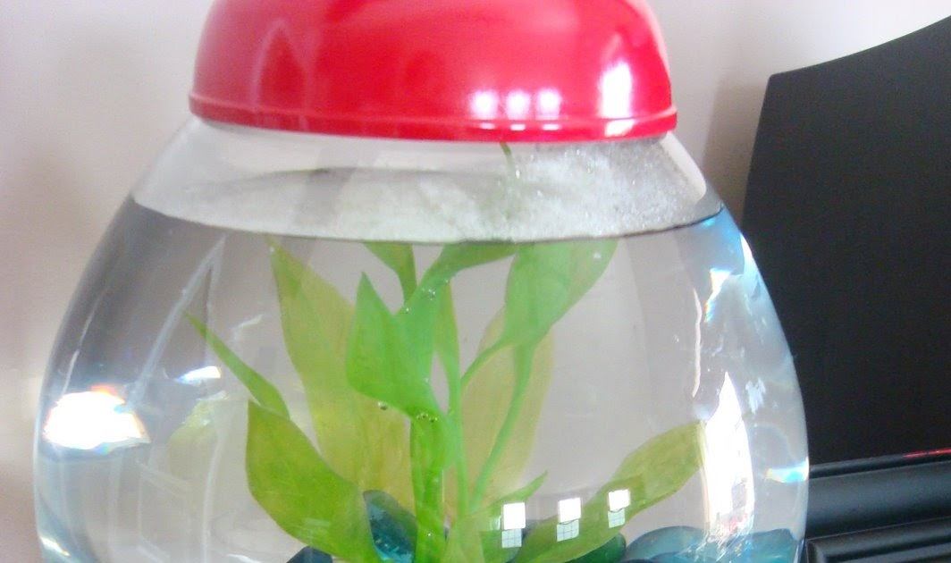 Gumball fish tank from thrifty decor chick for Aquarium decoration sealant