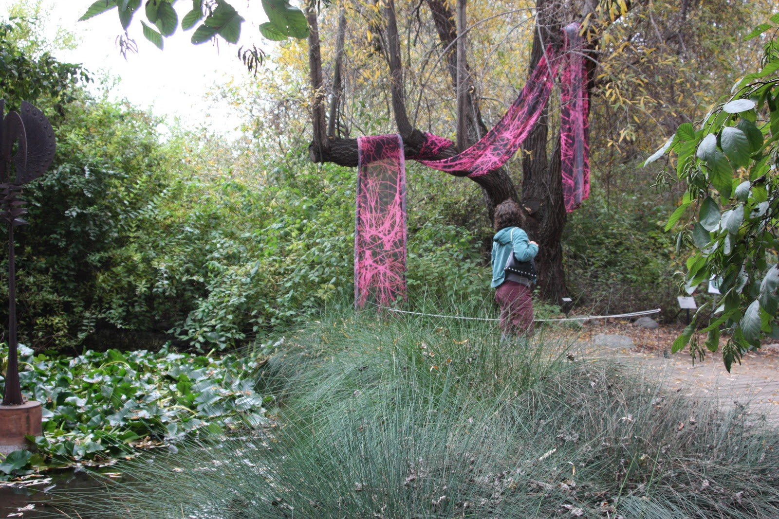 Attirant Cycling Claremont: Rancho Santa Ana Botanic Garden.
