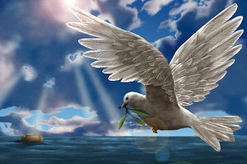 Dove of Peace Over Flood