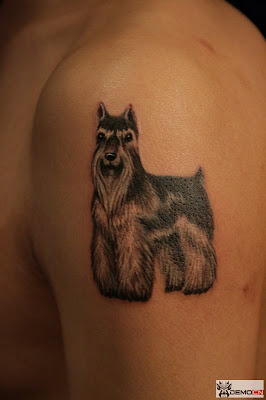 A cute and pussy puppy tattoo design on the arm