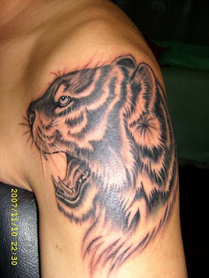 tiger tattoo on the arm