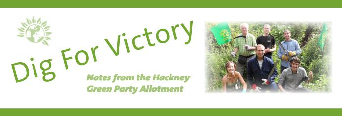 Dig for Victory: Notes from the Hackney Green Party Allotment