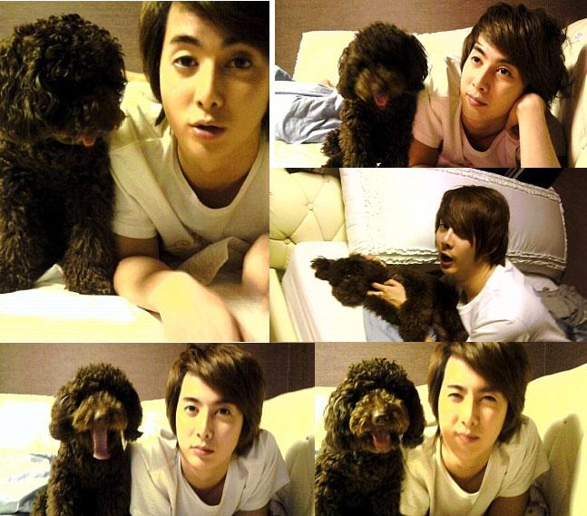 http://1.bp.blogspot.com/_vu9uqzISxb0/TFhXF03n8XI/AAAAAAAAMhQ/YpYvfGh-5Y8/s1600/hyung+jun%27s+dog+choco.jpg