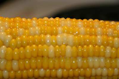This is a picture of corn.