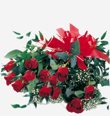 BUON COMPLEANNO LAVOLPEALLEGRETTA-LIGHTER Rose-rosse