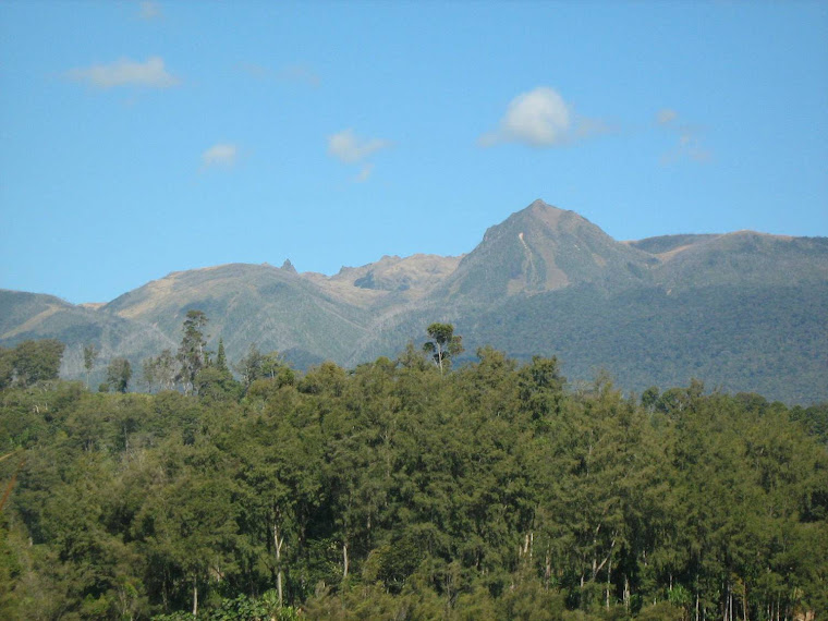 Mt Giluwe