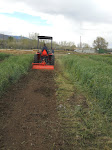 Making wind rows for vegetable production