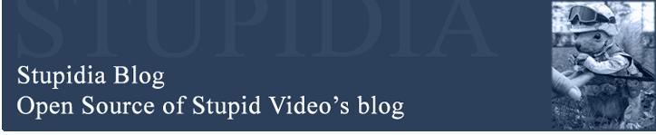 Stupidia - Funny Stupid Videos Blog