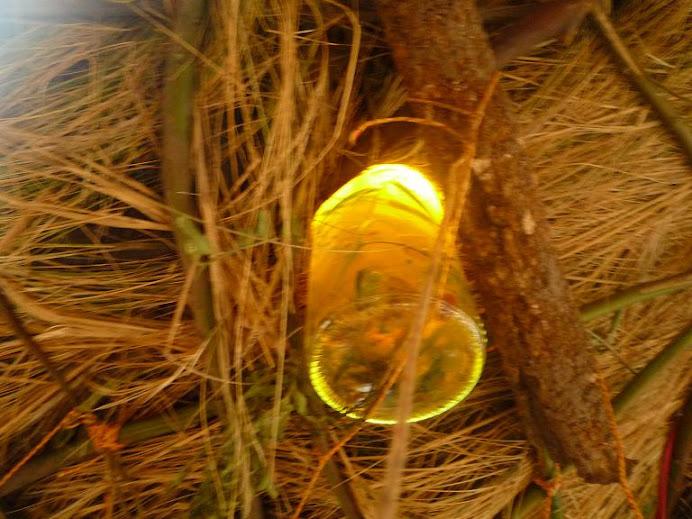 botella de luz en el techo