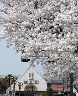 国立駅の三角屋根と桜