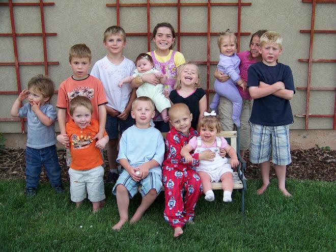 Ivins Family Grandkids