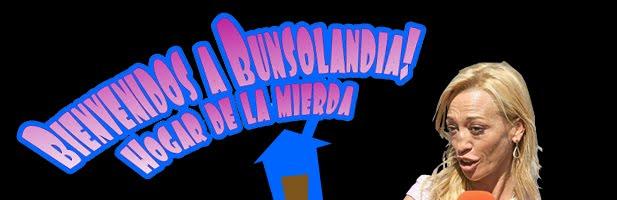 Bienvenidos a bunsolandia