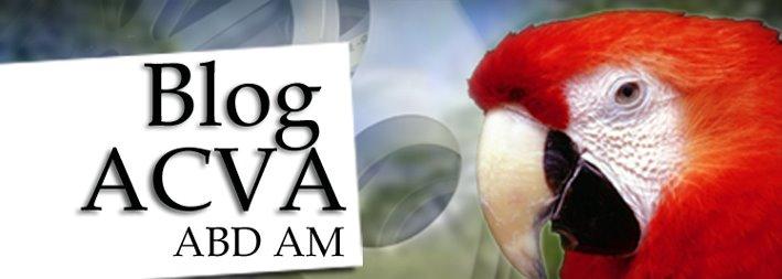 Blog ACVA