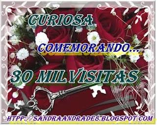 http://1.bp.blogspot.com/_vzrlnu76oJw/SxkPDI4BxYI/AAAAAAAAChs/bwYdVCbt6xA/s320/rosaschaves1.jpg