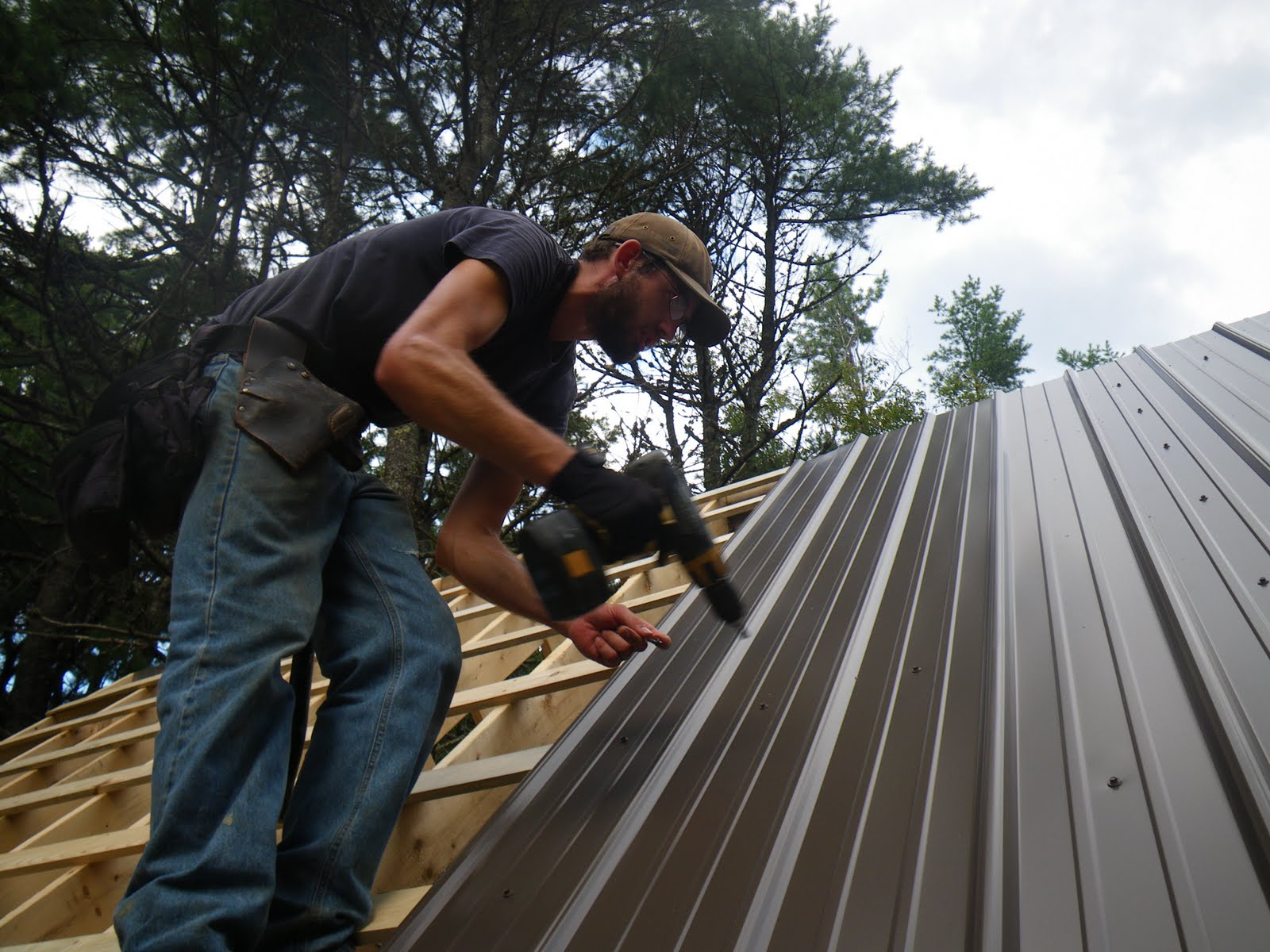 The Tale of Wags: Roofing in Metal