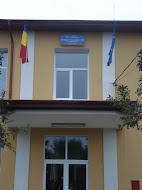 """SCOALA CU CLASELE I-VIII """"VLADIMIR STREINU""""-TEIU-ROMANIA"""